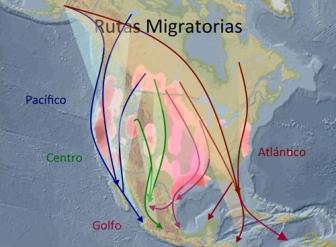 nentorno-migracion03